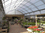 National Structures have just completed work at Dents Garden Centre